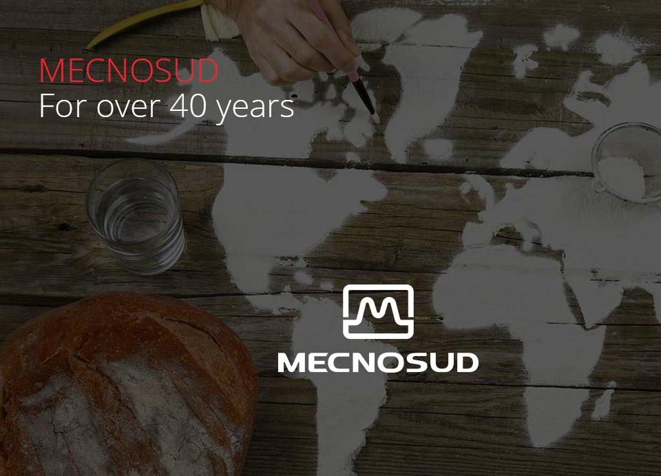 MECNOSUD Dough Mixers